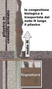 PilastroCemeto NodoH